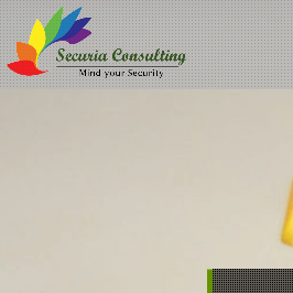 Securia Consulting